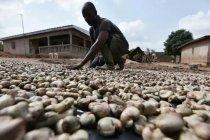 Coronavirus : « L'Afrique peut profiter de l'après-crise pour relocaliser son industrie »